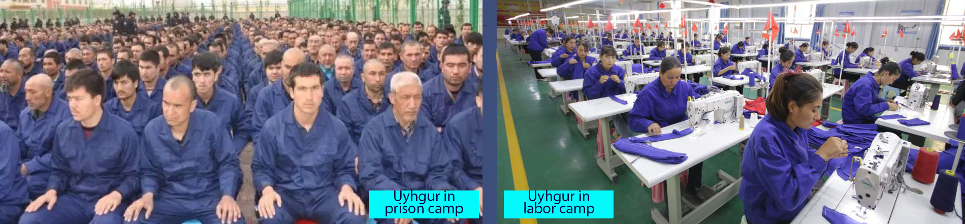 uyhgur in the camps